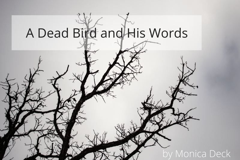 A Dead Bird and His Words